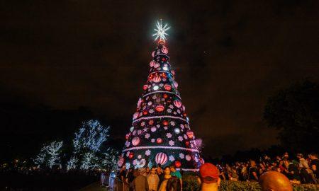 Árvore de Natal, Parque do Ibirapuera